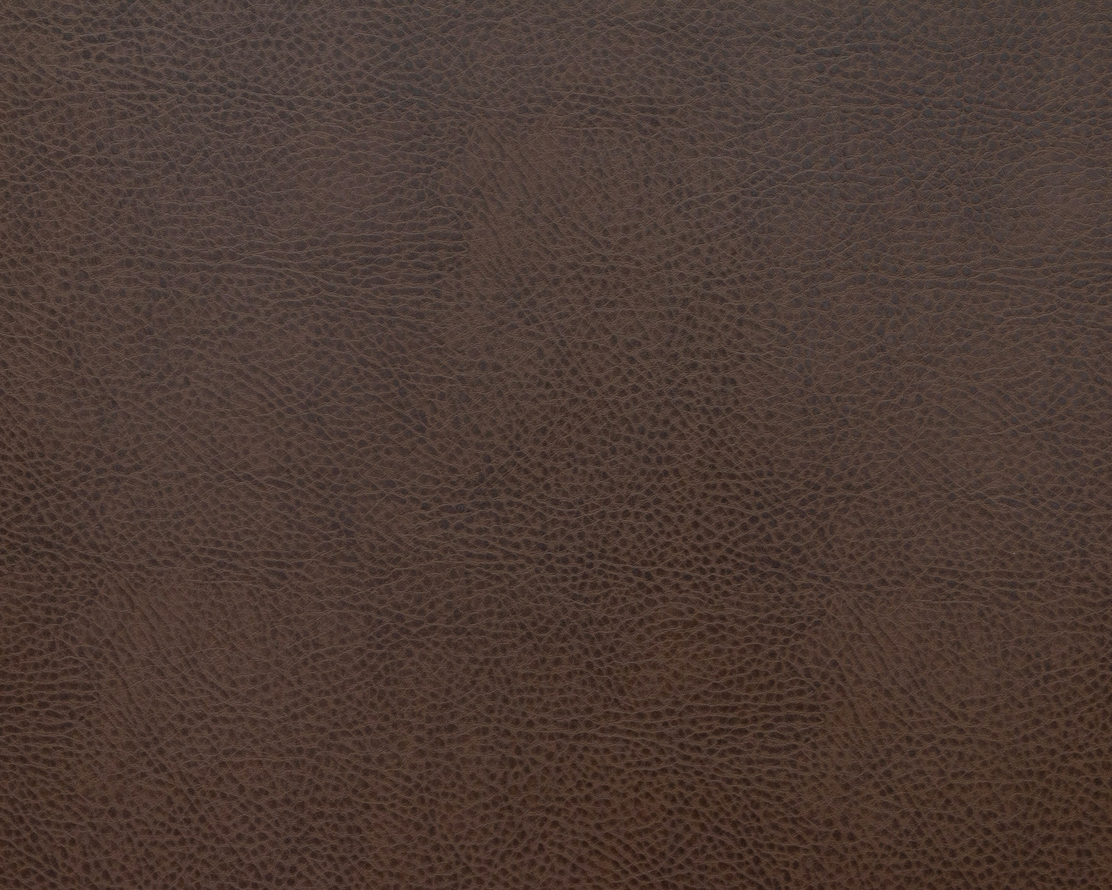 Teos dark brown